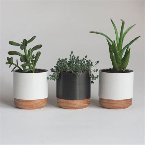 Small Plants For Office Desk The 25 Best Ideas About Succulent Planters On Pinterest Indoor Succulents Succulent Pots And