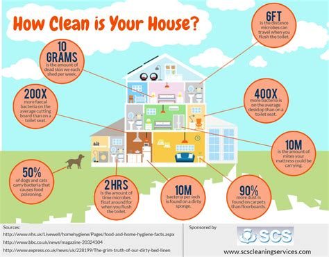 how to clean your home how clean is your house visual ly