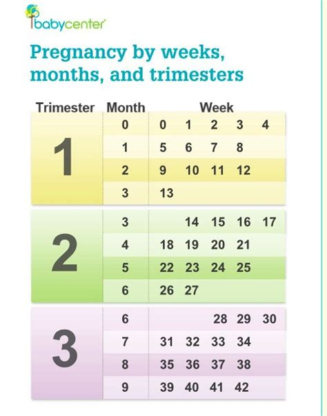 how am i pregnancy by weeks months and