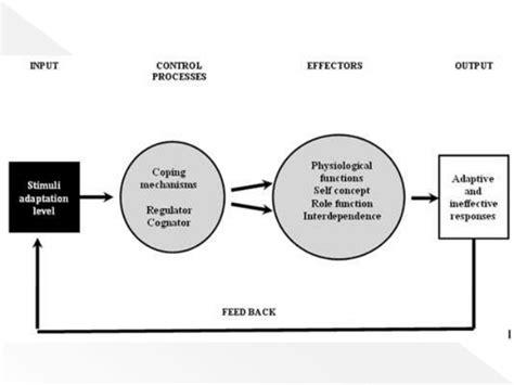 Roy S Adaptation Model