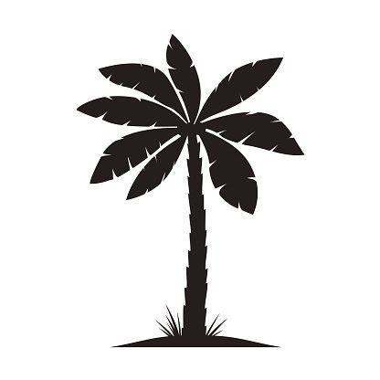 set of black palm vector illustration on white premium