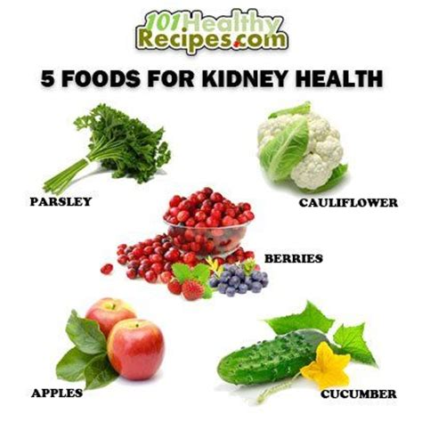 renal diet for dogs organic kidney diet for dogs consultantposts