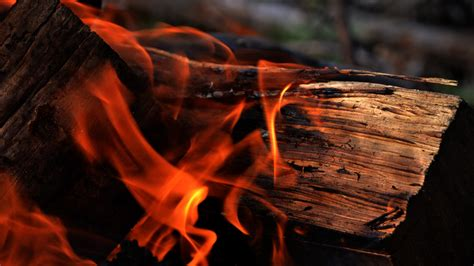 How To Light Firewood Wood And Fire Not Always Enemies Creative Mind