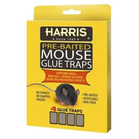 harris mouse glue traps 4 pack hmg 4 the home depot