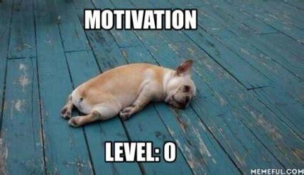 Lazy Day Meme - lazy ass
