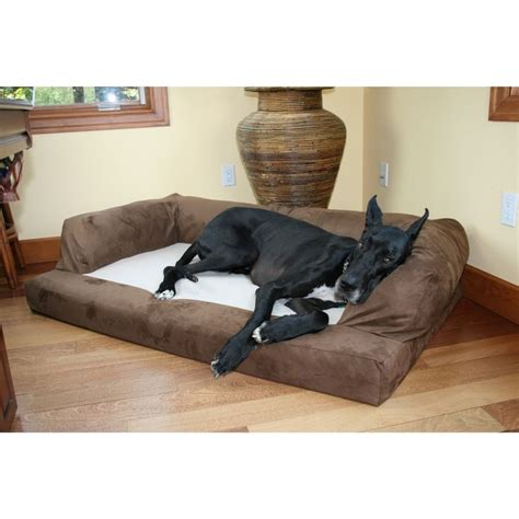 orthopedic dog couch 1000 ideas about orthopedic dog bed on pinterest