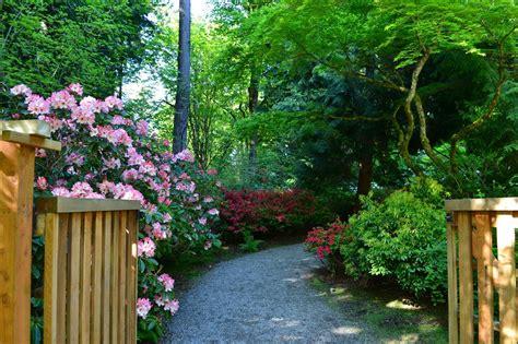 Bellevue Botanical Garden Letters Sunday Morning Stroll Bellevue Botanical Garden