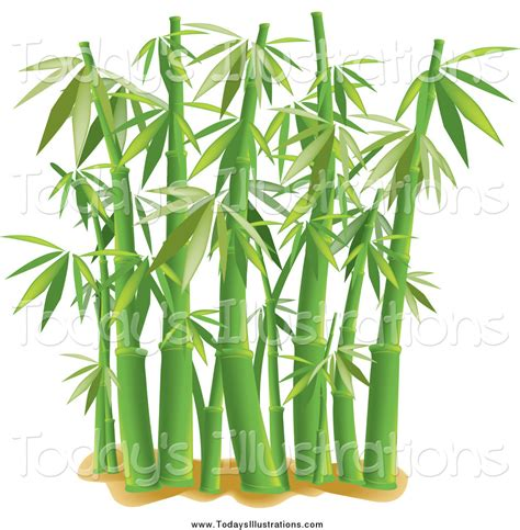 bamboo clip bamboo stalk clipart www imgkid the image kid has it