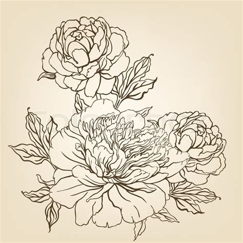 retro drawing vintage hand drawing background with flowers vector