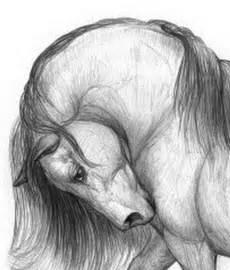 dibujos realistas muy faciles cuadros modernos pinturas y dibujos cabezas de caballos