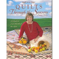 a vet through the seasons books 1000 images about quilt in a day blocks on