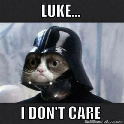 Star Wars Cat Meme - star wars meme grumpy cat meme lol lulz geek darth vadar