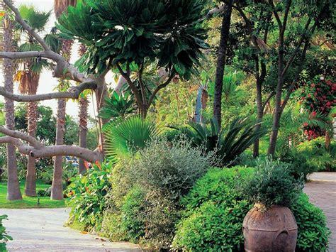 giardini negombo ischia parco negombo 187 ischia safari