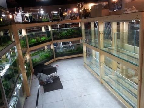 fish tank rack plans woodworking projects plans