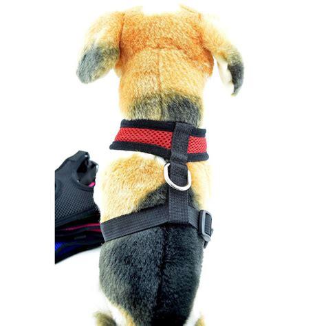 Rompi Mesh Anjing Size S Black rompi mesh anjing size s black jakartanotebook
