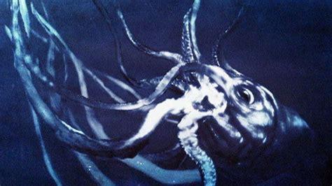 Kraken Real Life Loading