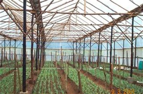 greenhouses advanced technology for protected horticulture books horticulture greenhouse cultivation