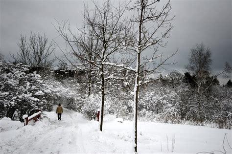 winter stock photo colourbox winter stock photo colourbox