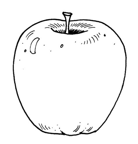 coloring book apple printable apple coloring pages coloring me