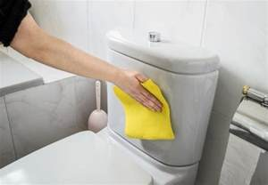 Toilet That Cleans Your But How To Clean A Toilet Bob Vila