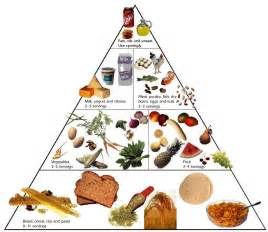club fitness the six components of nutrition