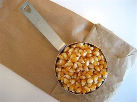 Popcorn In Brown Paper Bag - how to microwave popcorn in a brown paper bag and make it