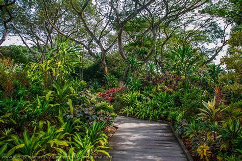 singapore botanic gardens location garden ftempo