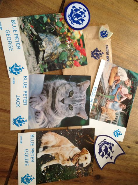 fat cat tattoo jackson ca hours blue peter theme song movie theme songs tv soundtracks