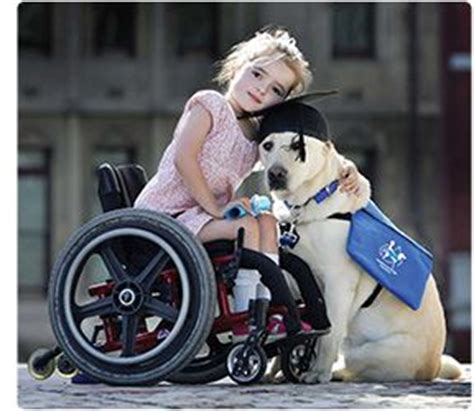Activities For Blind Dogs 1000 Images About Activities For Kids Disabled Adults On