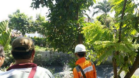 Pipa Di Bali pipa gas pecah air sungai kalibokor menyembur setinggi 1 5 meter tribunnews