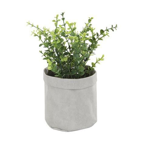plant  pouch kmart
