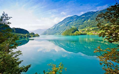 wallpaper danau pegunungan ranting pohon musim panas