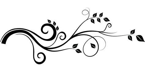 enredadera rama hojas graficos vectoriales gratis en pixabay