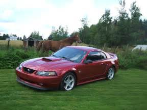 1999 Ford Mustang Coupe 1999 Ford Mustang Exterior Pictures Cargurus
