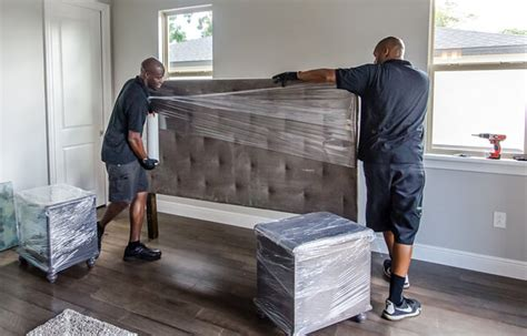 moving  fumigation services  rid  pests bedbugs