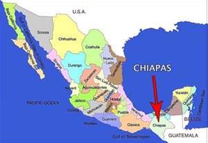 mexico reports 11 000 cases of chikungunya virus