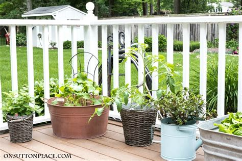 easy container gardening vegetables easy container gardening with vegetables and herbs