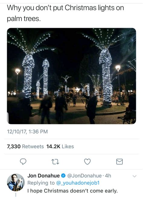 hire someone to put up lights top 28 why not to put lights on a palm tree
