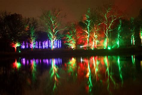 Arboretum Lights by 8 Chicagoland Events To Attend Uncategorized