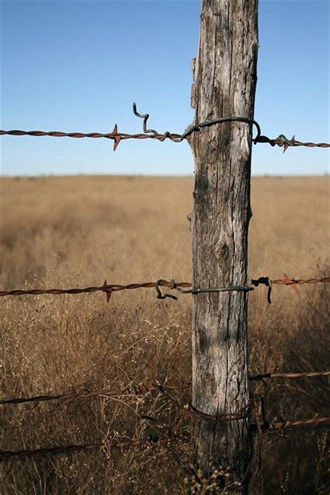 barbed wire fence barbed wire fence i d to draw this diy inspiration posts ea and the o jays