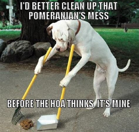 Dog Poop Meme - dog poop hoa meme quickmeme
