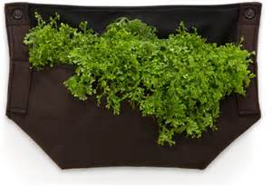 Woolly Planter by Wall Planters In Spain Green Living Wall