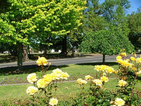 eventfinder new plymouth cambridge town garden photo gallery for cambridge