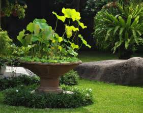 tropic gardens gardening in a tropical climate