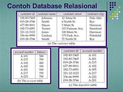 desain database apotik contoh database client server tempat yes