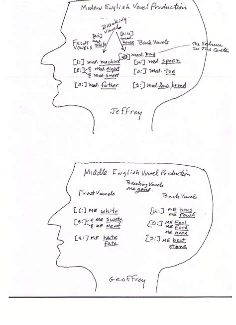 great vowel shift diagram middle modern