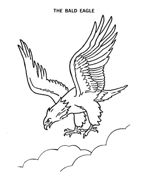 polish eagle coloring page free bald eagle coloring page find this coloring page
