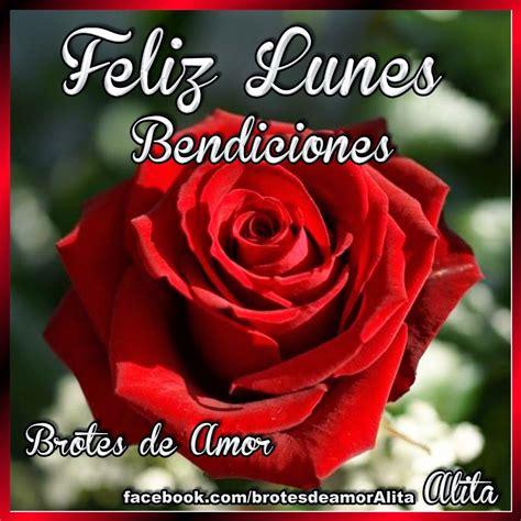 imagenes de feliz lunes con rosas brotes de amor feliz lunes