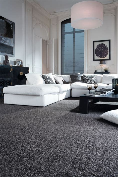 sophisticated black  white living room idea monochrome