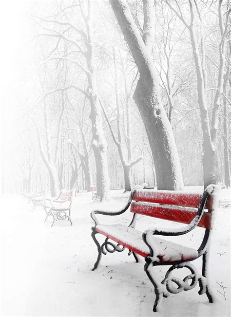 bench in snow red bench in the snow by jaroslaw grudzinski